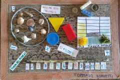 creazione-Tommaso