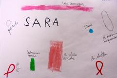 rappresentazione-di-SARA